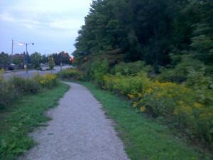 Trails through natural areas are designed to allow residents to enjoy the natural feature while minimizing disturbance to the feature.
